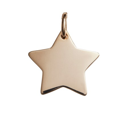 Engravable rose gold star pendant the silver store personalised personalise this star pendant mozeypictures Gallery